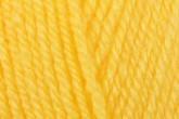 Cygnet Daffodil